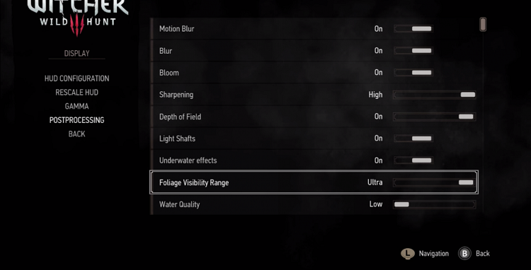 Witcher 3 Setting